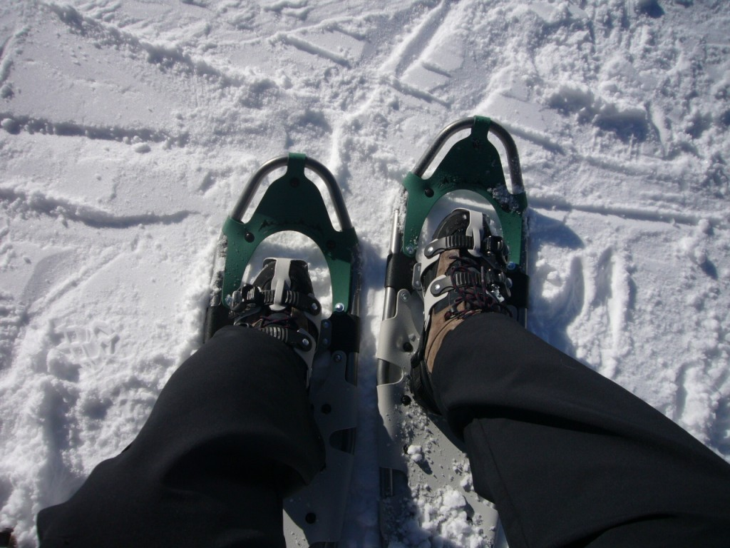 The new showshoes - great for deeper snow, but still very light